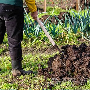 Línea de fertilizantes orgánicos